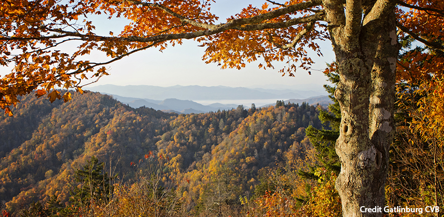 Autumn Gatlinburg Scene Credit Gatlinburg CVB