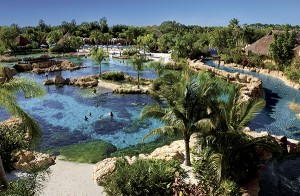 Credit Discovery Cove