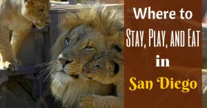Lion with Cubs -Courtesy SDZ Safari Park
