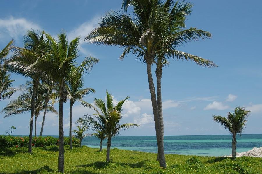 Freeport Bahamas Beach