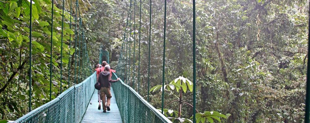 Costa Rica - Selvatura Suspension Bridge #3
