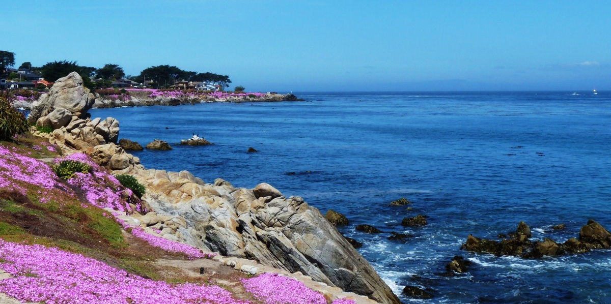 lovers-point-pacific-grove-JPG