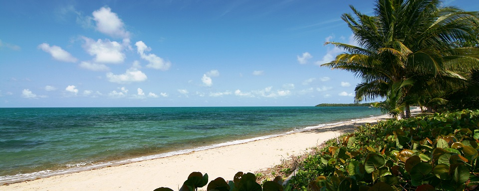 Almond_Beach,_Hopkins,_Stann_Creek,_Belize