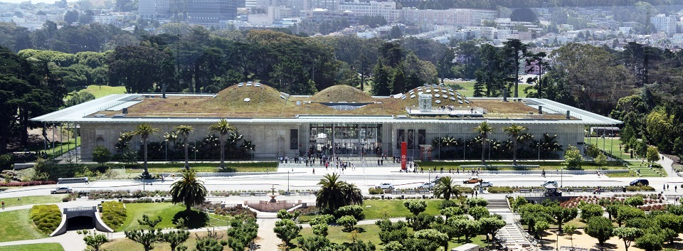 California_Academy_of_Sciences_pano