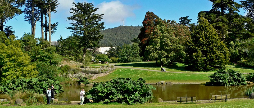 Best Botanical Gardens In The U S Group Tours