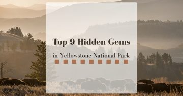 Top 10 Hidden Gems of Yellowstone National Park