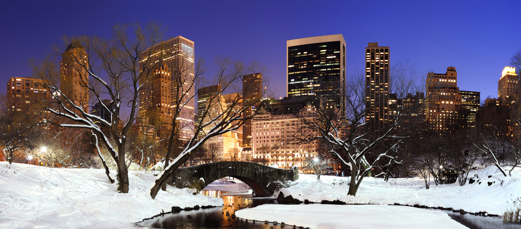 Central Park NYC Group Tours