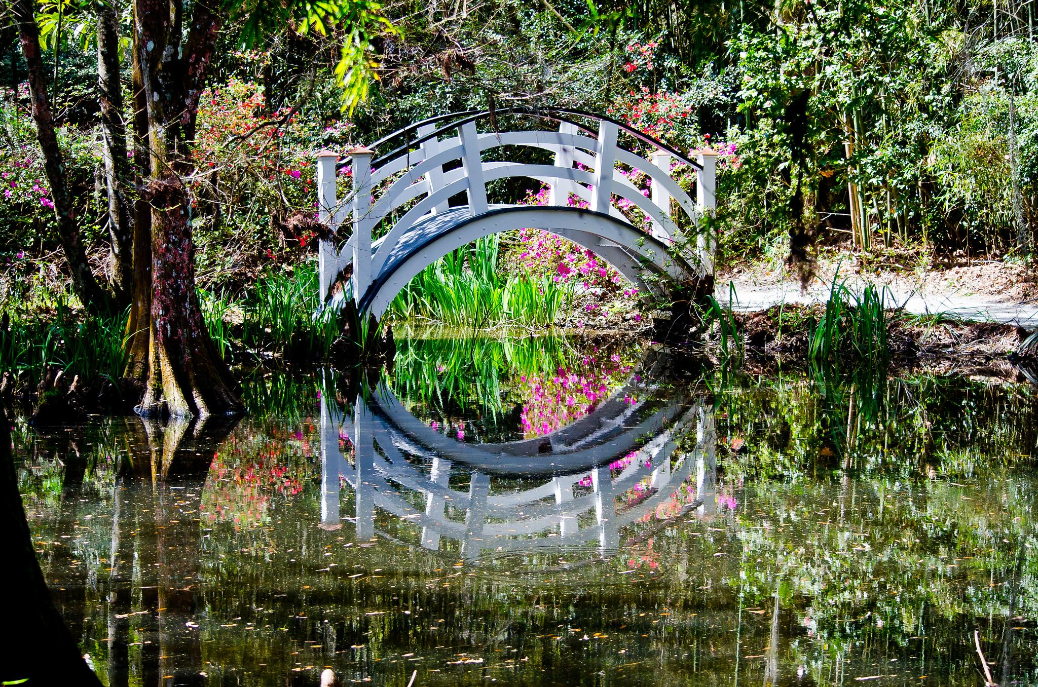Magnolia Plantation Dan J Flickr