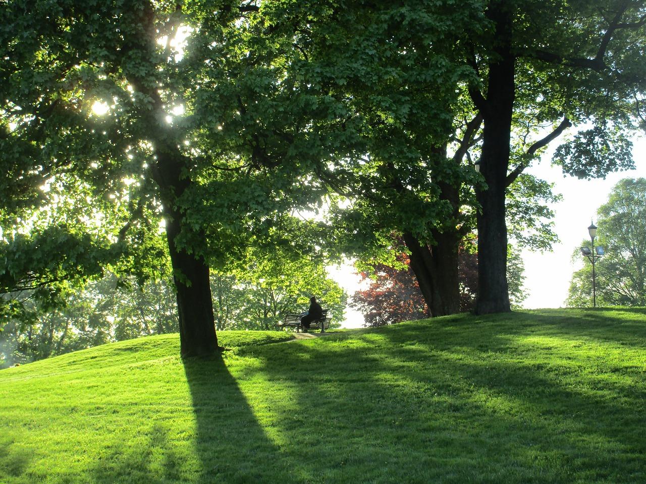 Munden Park Tranquility Public Domain Pixabay