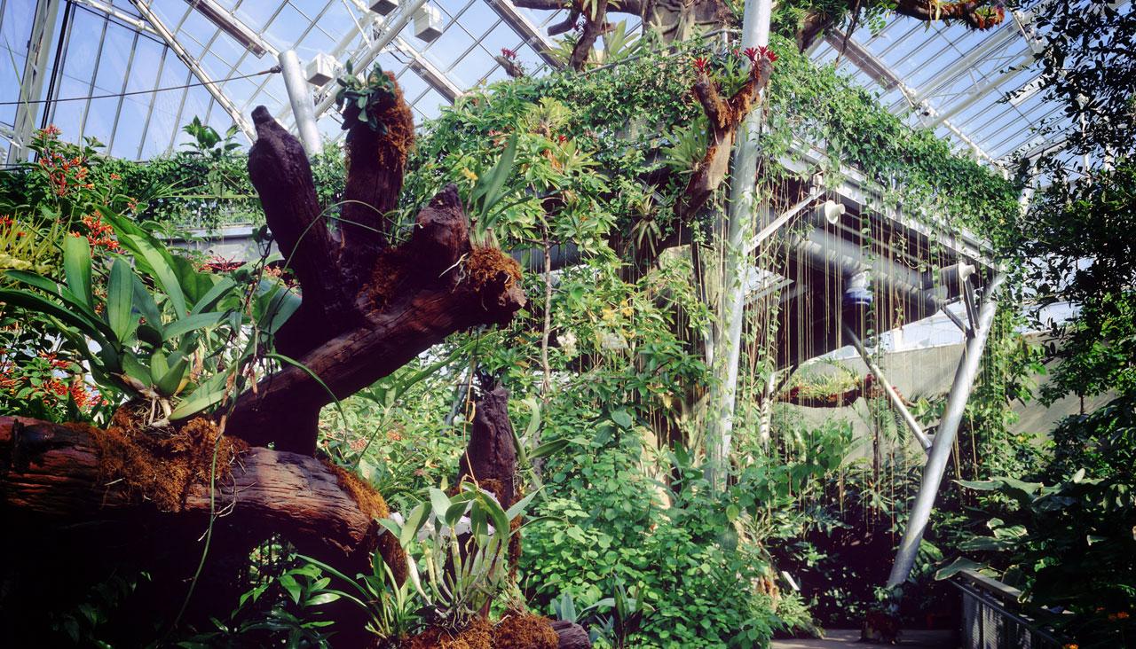 Botanic Gardens Courtesy of ThisisCleveland.com