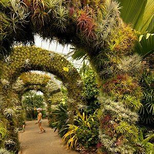Daniel_Stowe Botanical Garden Credit Regional Visitors Authority