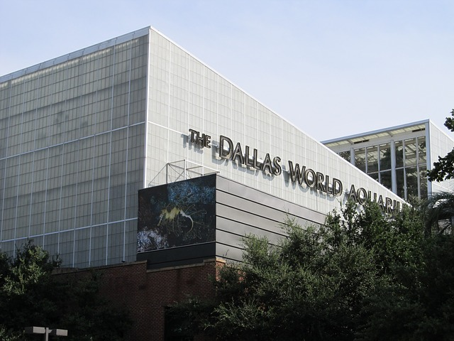 Dallas World Aquarium Pixabay Public Domain
