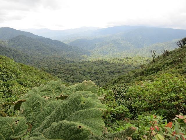 Monteverde Pixabay Public Domain