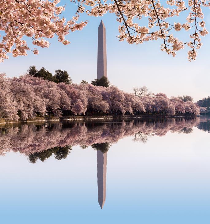Washington Monument Stockfresh