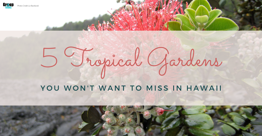 5 Tropical Gardens You Won't Want to Miss in Hawaii Group Tours