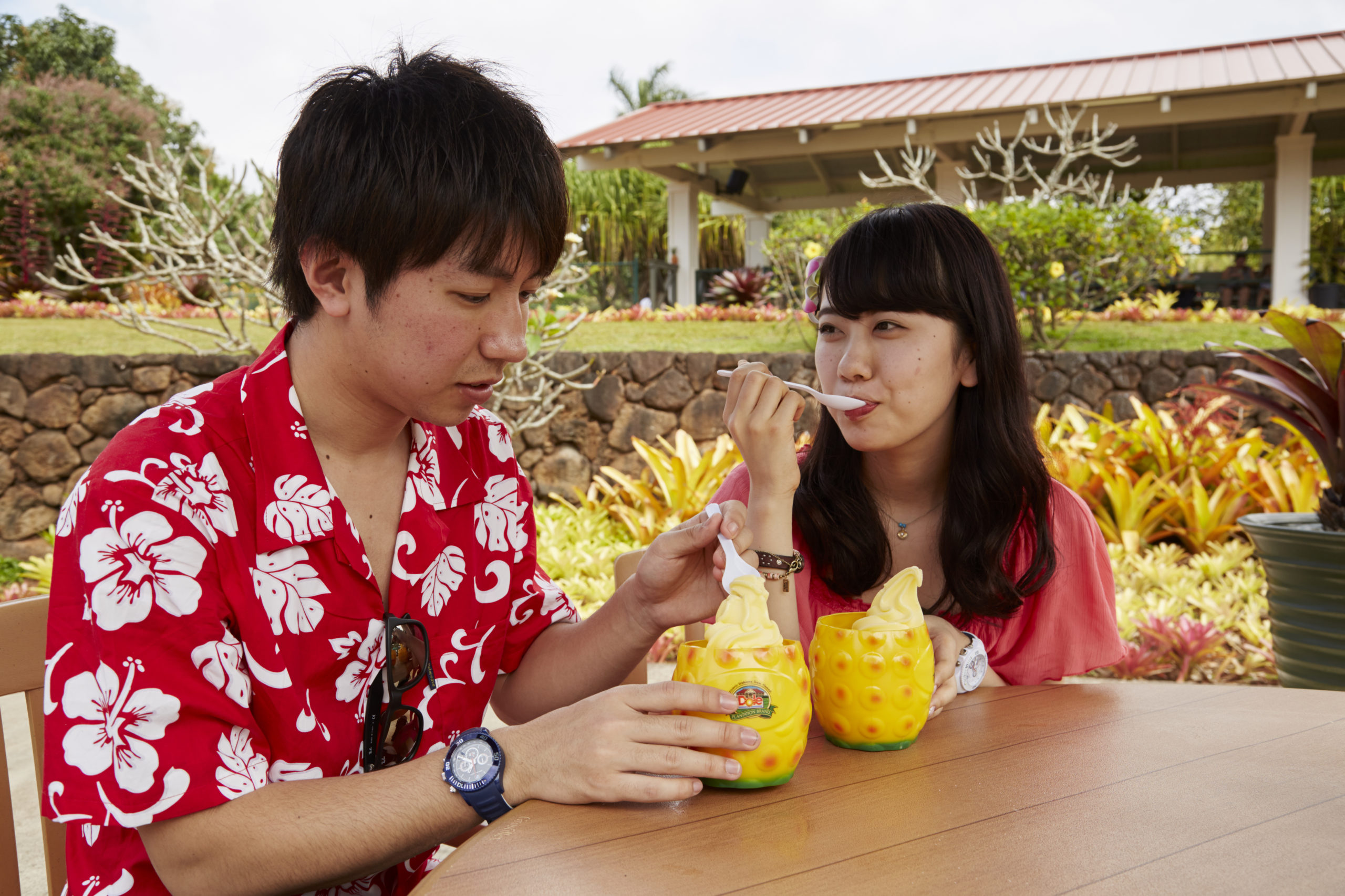 Dole Plantation, a property of Castle & Cooke Properties Inc (1)